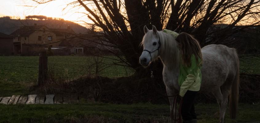 Wie alles begann: Wandern mit Pferden