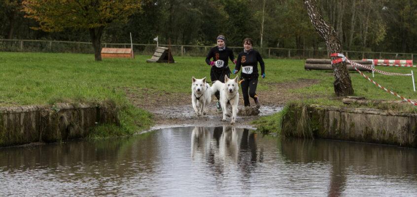 StrongDog Wild&Dirty North – Unser erster Hindernislauf mit Hund