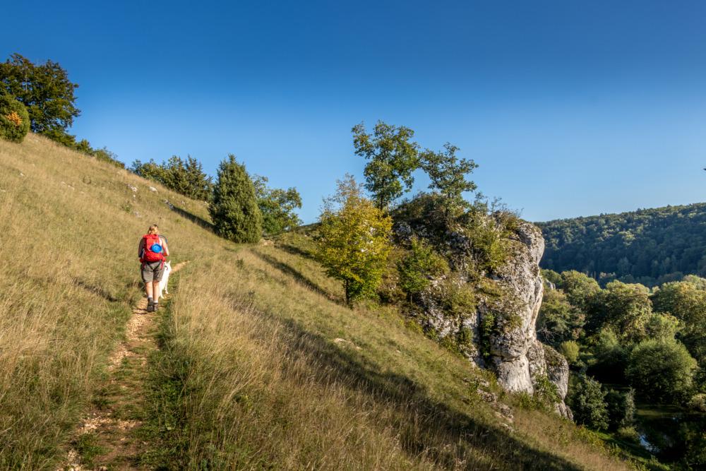 Wanderurlaub mit Hund auf dem Altmühltal-Panoramaweg