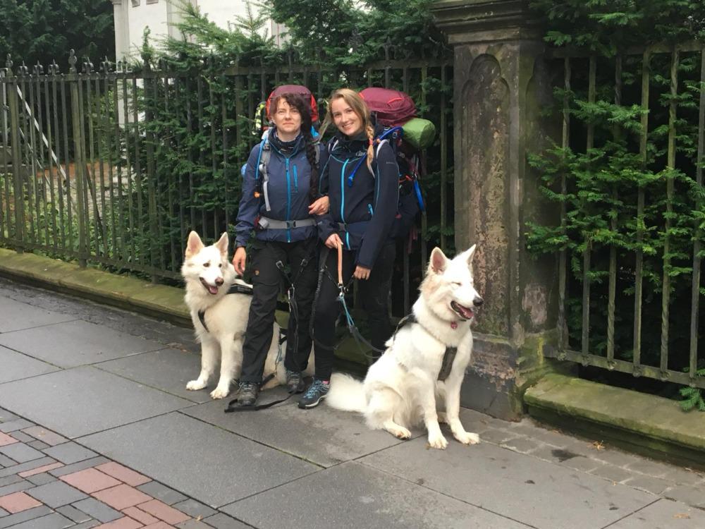 Pilgern mit Hund auf dem Harzer Klosterwanderweg