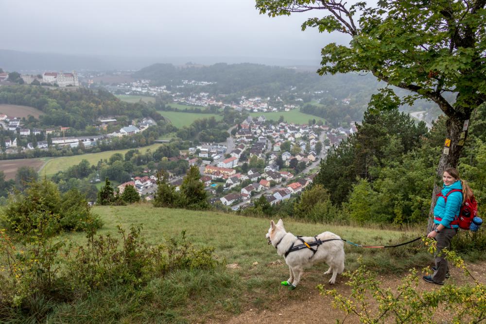 Eichstätt mit Hund – Auf dem Rundwanderweg Nr. 7 um die Bischofsstadt