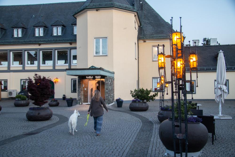 Einzigartig am Rhein: Urlaub mit Hund im Klostergut Jakobsberg