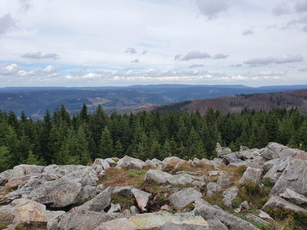 Ausblick von der Hanskühnenburg im Harz mit Felsen, Fichten und Bergen am Horizont