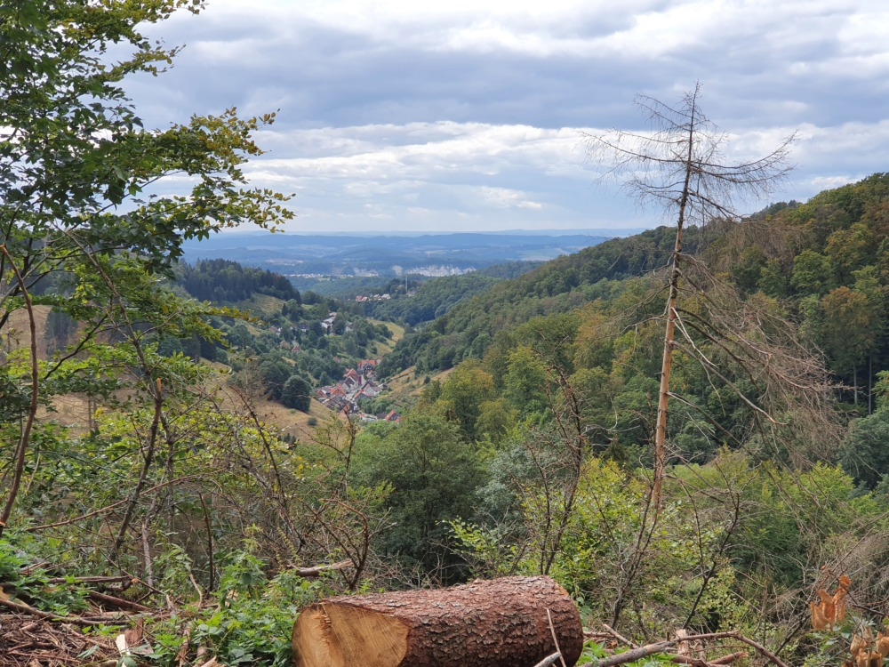 Blick auf Lerbach im Harz