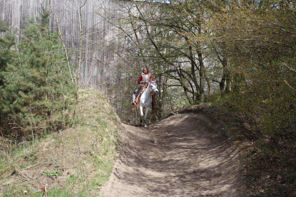 Wanderreiten mit Pferd