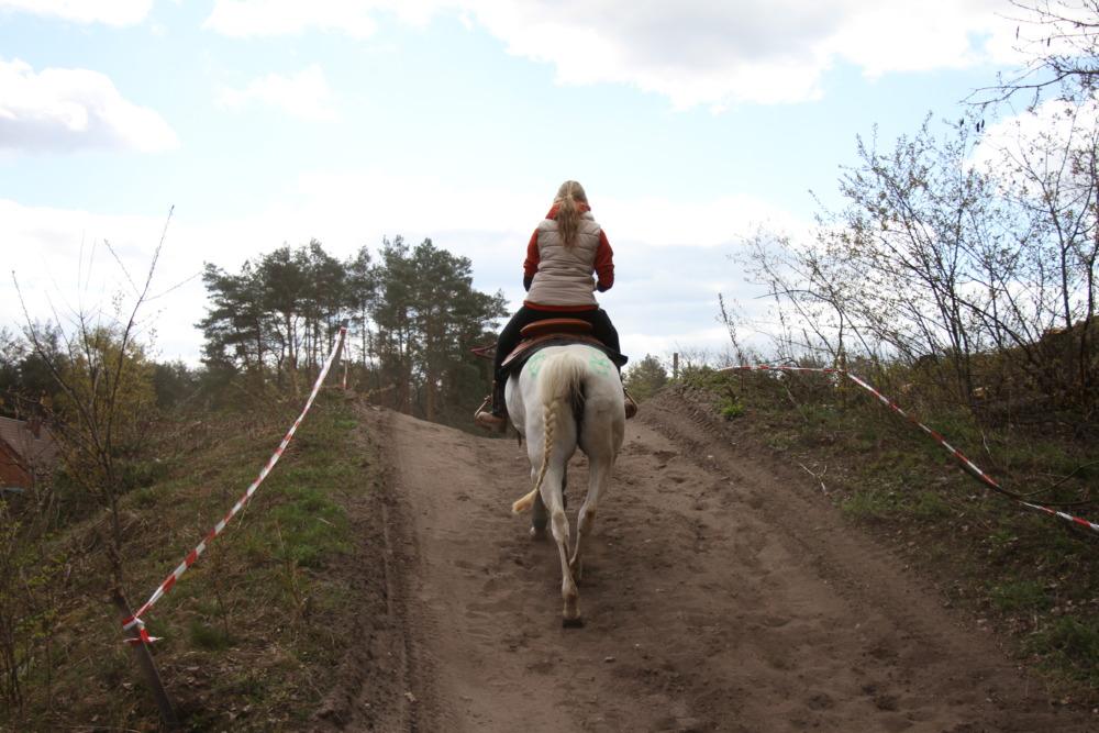 Offroadtrail mit Pferd
