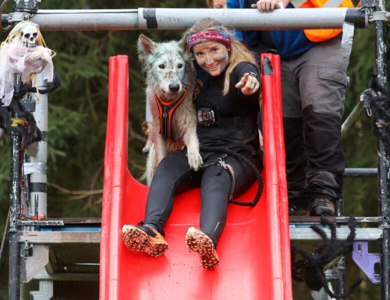 Laufen mit Hund: Unsere Events im Zughundesport